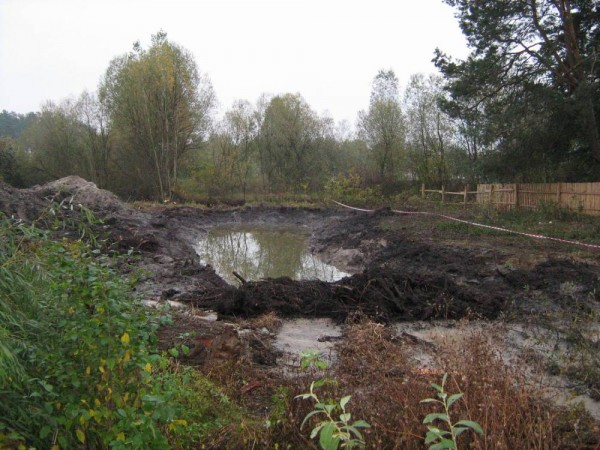 болотистая почва
